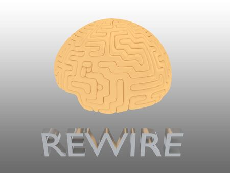 3D illustration of REWIRE script under a human brain