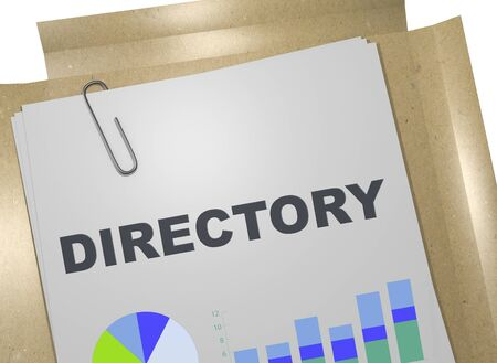 3D illustration of DIRECTORY title on business document
