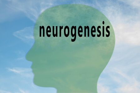 Render illustration of neurogenesis title on head silhouette, with cloudy sky as a background.