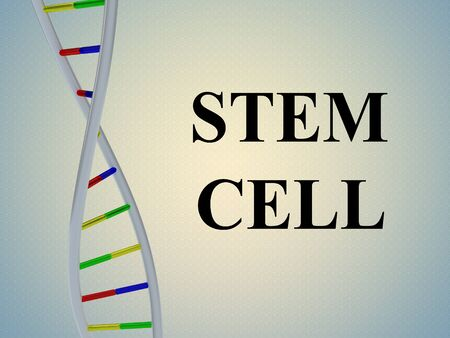 3D illustration of STEM CELL script with DNA double helix , isolated on colored pattern. Stockfoto