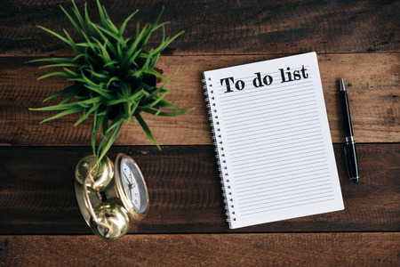 Clock, green plant, pen and notebook with TO DO LIST word. Management concept Archivio Fotografico