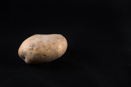 fresh unpeeled potato isolated on black background. food ingredients and agriculture concept