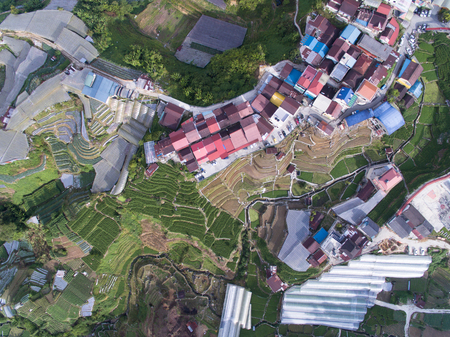 Aerial top down view of a farmland and houses in a rural countryside village located in Cameron Highland, pahang, malaysia