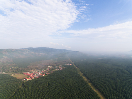 Aerial view uf a rural farmland with misty environment in the morning