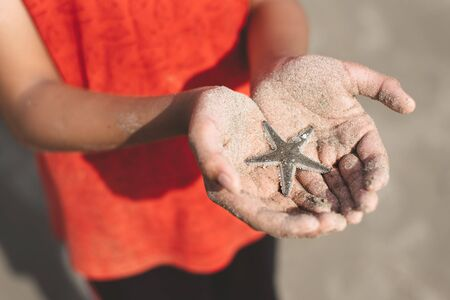 child holding or showing a starfish in a cupped hand with beach sand. concept of marine and aquatic life Фото со стока