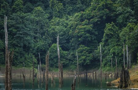 A beautiful scene at Kenyir Lake, Terengganu, Malaysia. Kenyir Lake also known as Tasik Kenyir, it is the largest man-made lake in South East Asia with an area of 260,000 hectares
