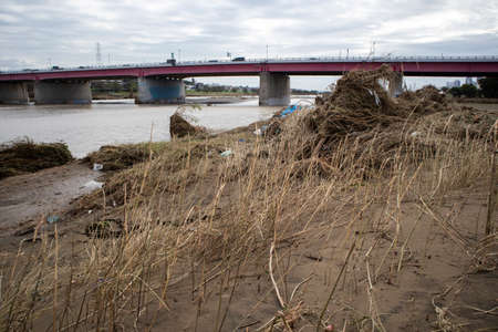 TAMAGAWA, KAWASAKI - October 15, 2019 : Destruction left by the Typhoon Hagibis in the Tamagawa riverbank.