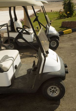 Electroautomobiles for movement on fields for a golf photo