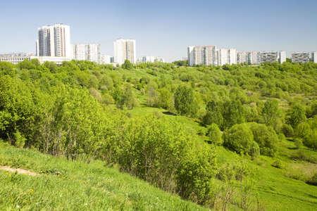 landscape in park
