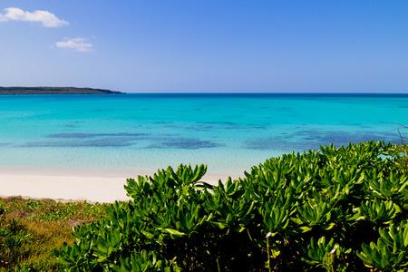 birdeye: Okinawa Beach