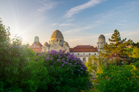 eclecticism: Spring in city of Budapest with blooming lilac