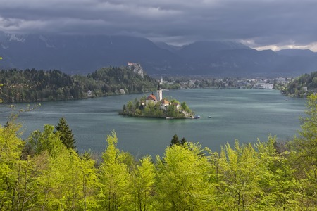 karavanke: View of Lake Bled from Little Osojnica Hill, at spring day with light green trees on foreground and dark clouds on background, Slovenia