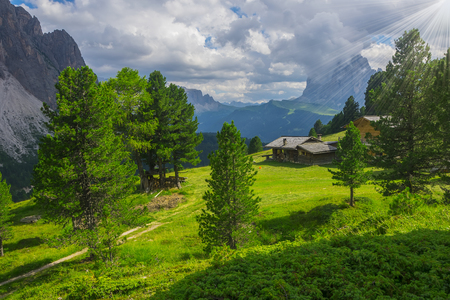 Sunlit picturesque meadow with traditional wooden alpine hut surrounded by spruces, Dolomites, Italy
