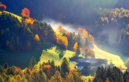 Colorful autumn landscape in the mountains with backlighted pasture, yellow and red trees, fog and farm buildings, Alps