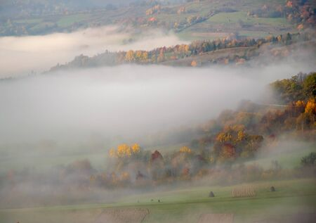 Autumn fog slides over colorful trees in the Carpathian mountains, Ukraine