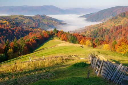 Amazing autumn morning in the Carpathian mountains. Wood fence on foreground. Colorful hills at sunlit and the fog sits below Stock Photo