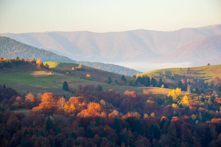 Colorful autumn morning after sunrise in the Carpathian mountains.