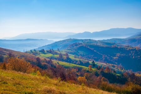 Amazing autumn scenery in the Carpathian mountains. Colorful hills in sunlit and hazy ridges on background