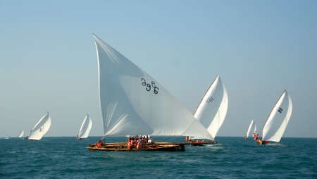 Traditional Sailing Dhow Race