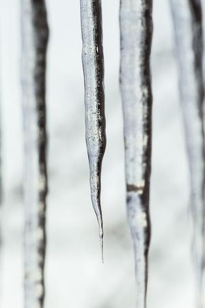 sopel lodu: Spring icicle close up on the blurry background Zdjęcie Seryjne