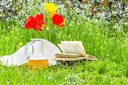 grassplot: Bouquet of tulips, books, white hat and carafe of juice on the green grass in the spring garden against the background of cherry blossoms