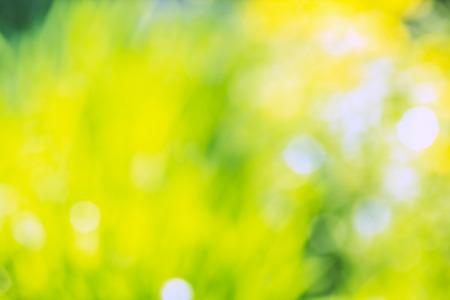 明るい抽象夏背景ぼやけて黄色と緑のスポット 写真素材