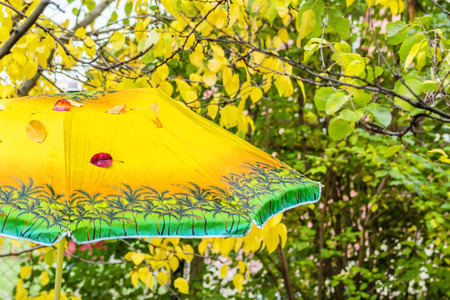 forgotten: Fallen leaves on a forgotten sunshade in an autumn garden Stock Photo