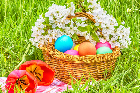 tulips in green grass: Wicker basket with colored eggs, red tulips and flowering branch cherry in the green grass on a spring day Stock Photo