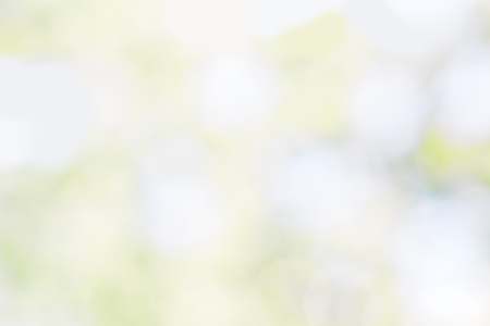 blue green background: Abstract blurred spring background with white, green and blue spots Stock Photo