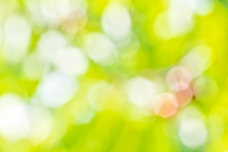 octahedron: Blurring background of summer orchard with sun glare on the leaves and berries on a sunny day Stock Photo