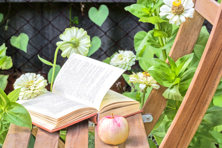 day flowering: Apple and open book on wooden garden chair among the flowering white zinnias in the garden on a summer day, close-up. Selective focus Stock Photo