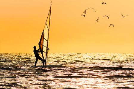 windsurf: Windsurfing at sea on orange sunsets background