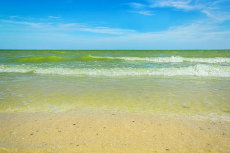 sandbank: Sunny summer morning on a sea shore on the background of blue sky