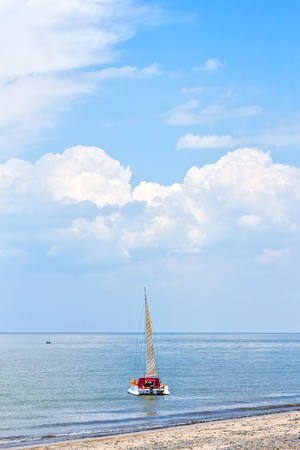Landscape with sailing catamaran near the sea shore on a summer day