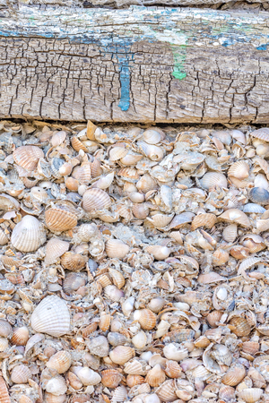 Background from an old wall of shell rock with crumbled plaster and a wooden board