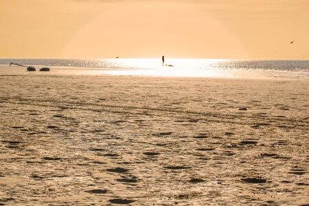 Deserted sandy beach close up and silhouette of a surfer away at sunset background Reklamní fotografie