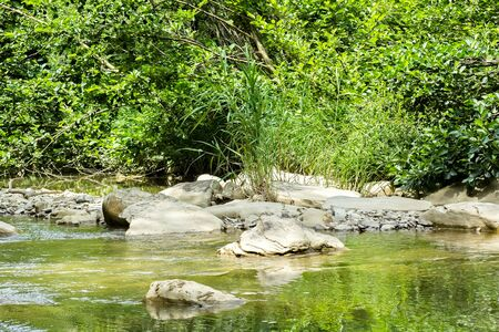 Scenic mountain creek in a shady forest on a hot summer day Reklamní fotografie