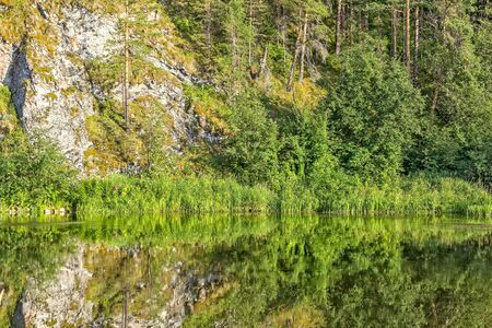 Summer landscape with forest, rock and reflection in the river in the evening sun, close-up