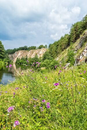 Picturesque landscape with a blooming meadow on the riverbank against the background of rocks and a cloudy sky