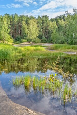 Picturesque landscape with lake and forest on a sunny summer day