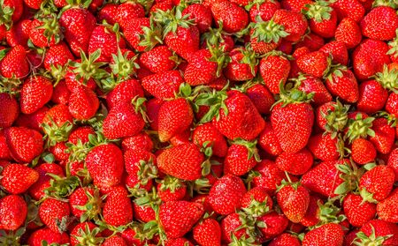 Strawberry. Crop of red ripe fresh berries. Fruit background and texture Reklamní fotografie