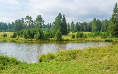 Ural landscape with meadow, pond and coniferous forest on a summer day