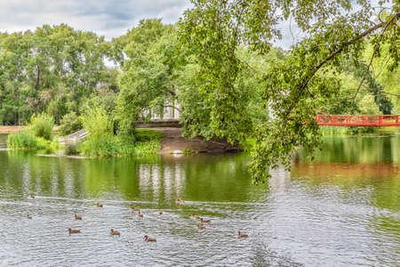 Suspension bridge and rotunda on the small island. Ducks on the pond in a park on a summer day. Park of the Rastorguev-Kharitonov estate, Russia, Yekaterinburg Reklamní fotografie