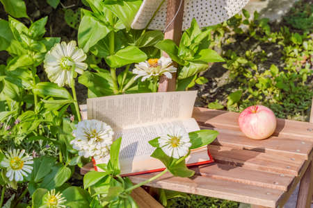 Apple hat and book on a wooden garden chair among the flowering white zinnias in the garden on a summer day. Selective focus