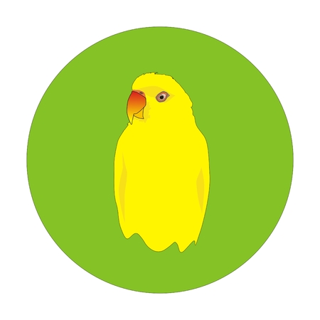 lovebird: Indian yellow parrot portrait in a green circle