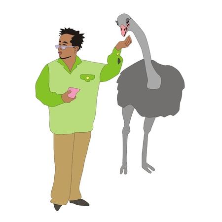 sanctuaries: Illustration of good tourist feeding bird ostrich in the park