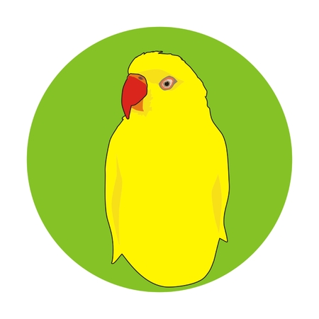 lovebird: Vector indian yellow parrot portrait in a green circle Illustration