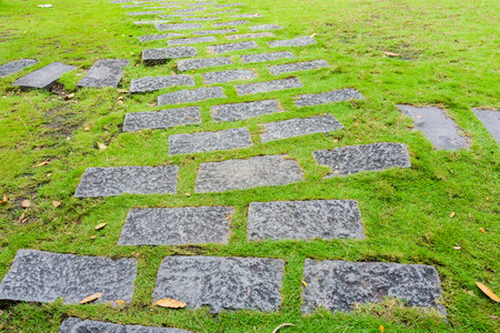 Walkway on grass Stock Photo