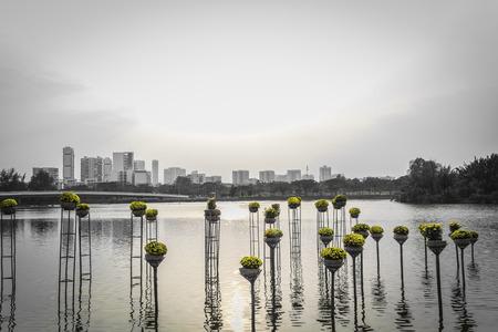 monochromatic: Landscape of city at sunseton a monochromatic background