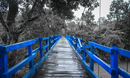 monochromatic: Blue wood bridge on a monochromatic background